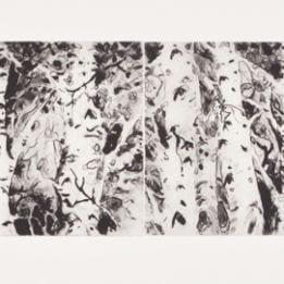Untitled (double aspen)