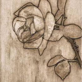 Rose 1 (rose collo-LIGHT)