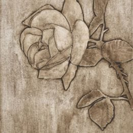 Rose 4 (rose collo- LIGHT)