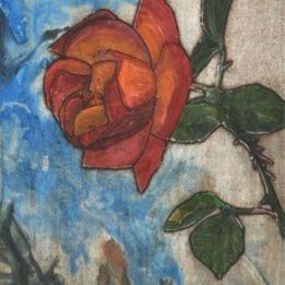 Rose 5 (rose combo)