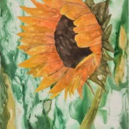 Sunflower 3 (sunflower WC)