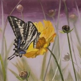 Tender Nectar